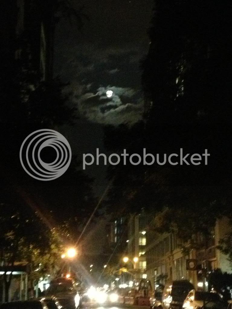 photo photo-16.jpg