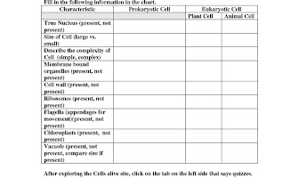 cells worksheets Anima and Bacterial Cell comparing prokaryotic and eukaryotic cells