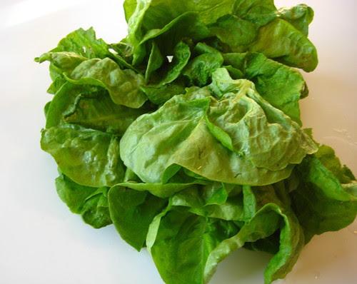 lettuce2