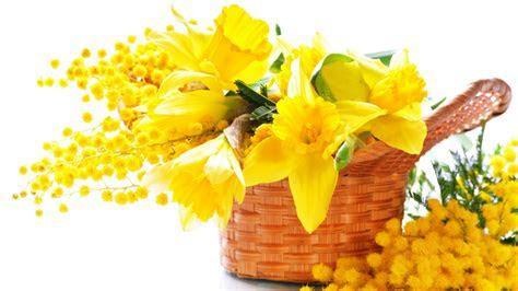 Yellow Flowers 7326 1920 x 1080   WallpaperLayer.com