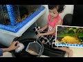 Belajar Memasukkan Ikan Hias ke Aquarium ❤ Learning to Preserve Fish ❤ Children's Video