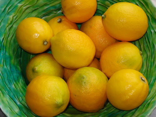 Bowl of Lemons A