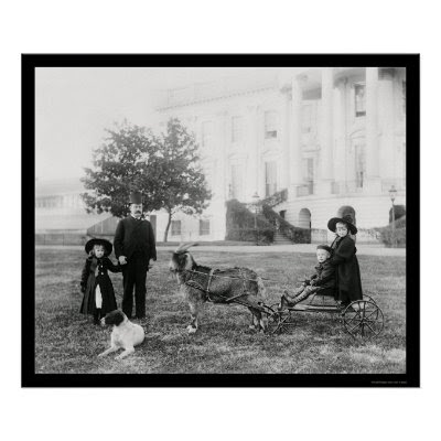 http://rlv.zcache.com/kids_on_a_goat_cart_at_the_white_house_1890_poster-p228263174323087702qzz0_400.jpg
