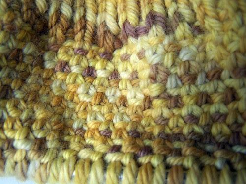 Lion Cub Linen Stitch