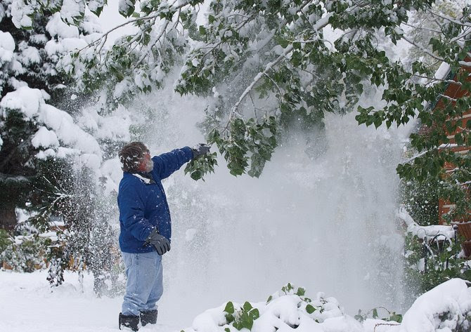 Douglas Wipper shakes the snow from the tree in front of his home on Missouri Avenue on Friday morning. Residents woke up to several inches of snow that took a toll on trees and power lines.