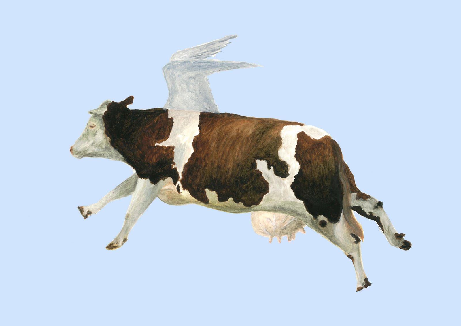 vaca cae desde un avion ruso sobre barco japones