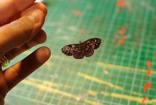 technique - butterflies (1 of 3)