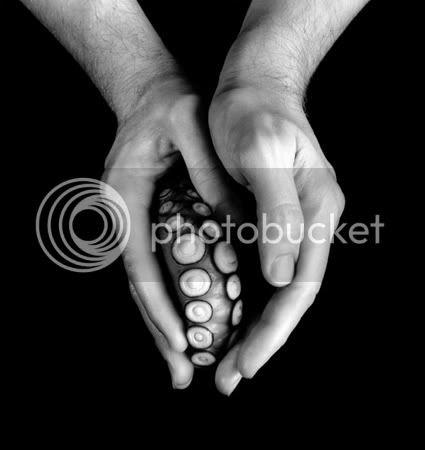 Pulpo y mano