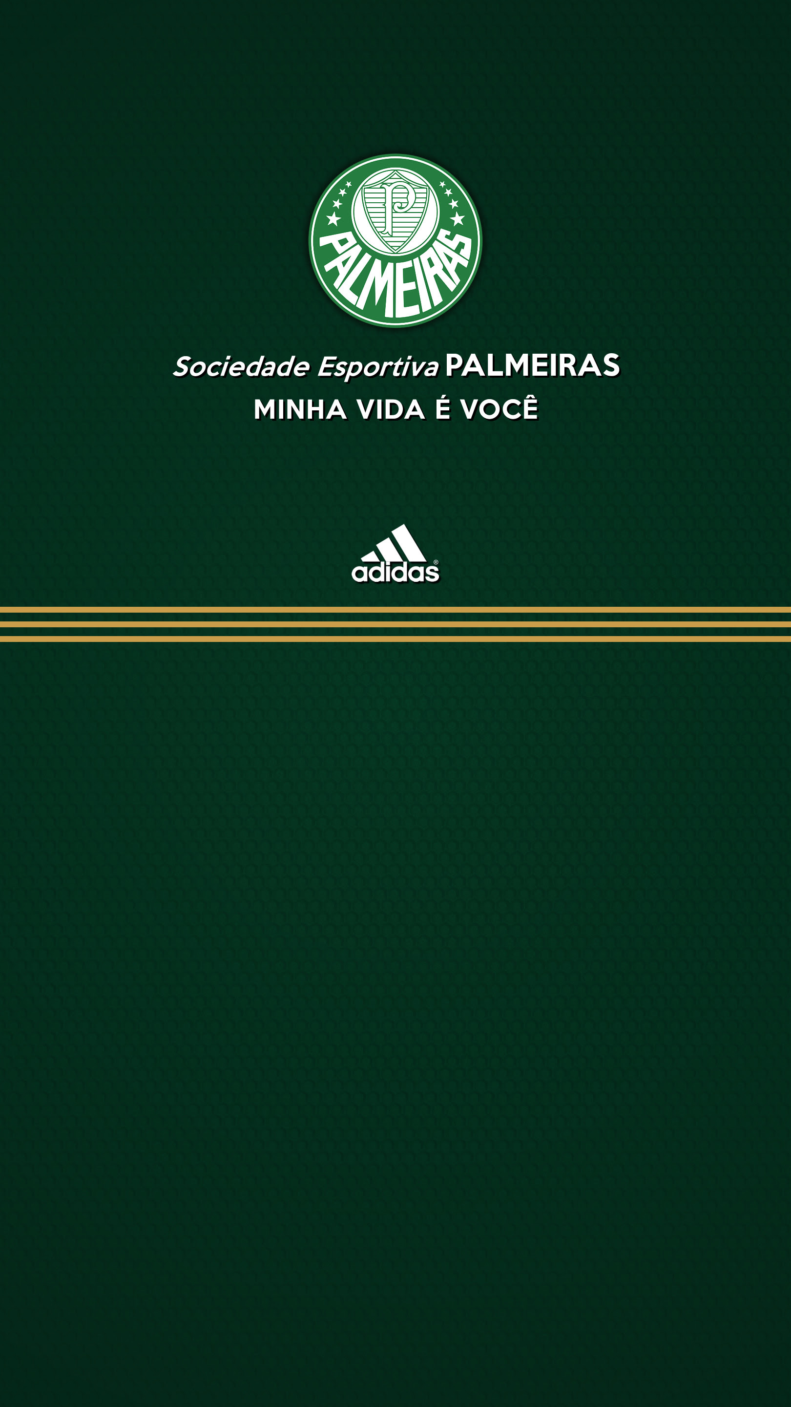Palmeiras Wallpapers 64 Images