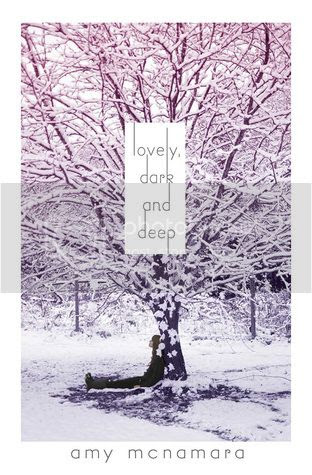 Lovely, Dark and Deep by Amy MacNamara
