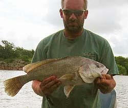 Drum fishing at Lake Tom Steed.
