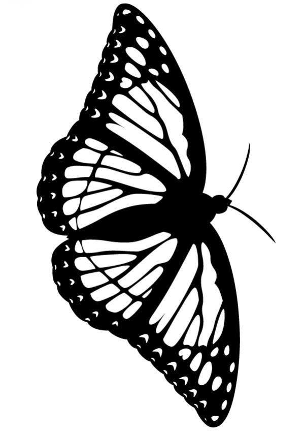 Dibujos Para Colorear Una Mariposa Eshellokidscom