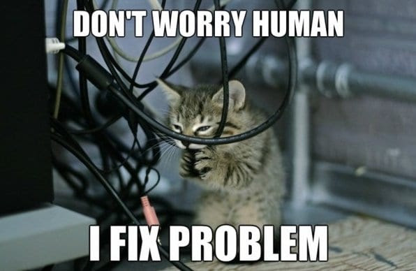 years 21 days ago http meme lol com funny funny pictures cat engineers