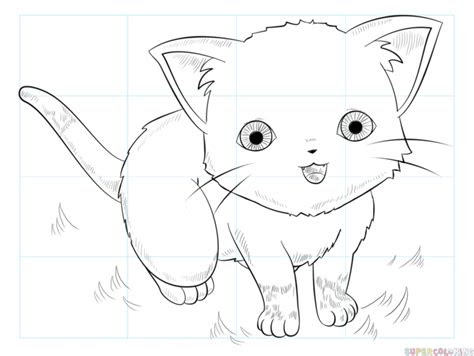 draw  anime cat step  step drawing tutorials