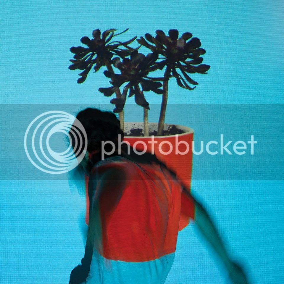 photo Local Natives - Sunlit Youth cover_zpsizsikt4q.jpg