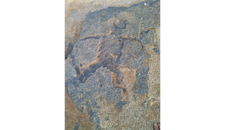 The ancient petroglyphs were covered back up with sand less than 24 hours later. Image: Avi Salvio/Facebook