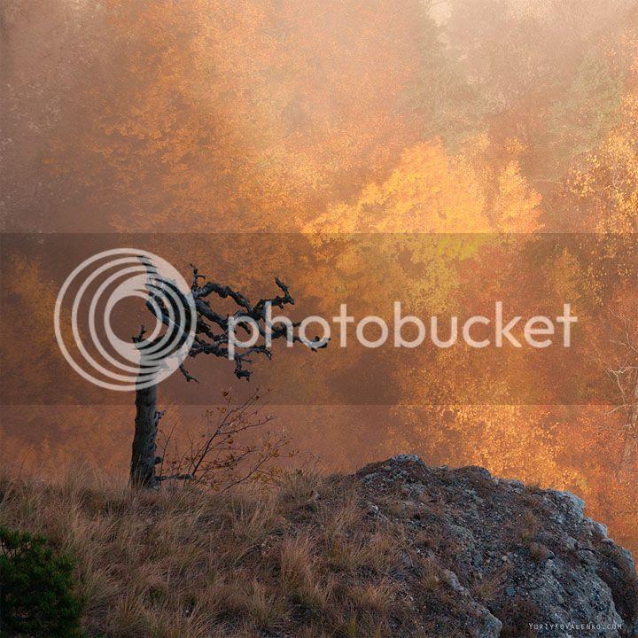 photo Yuriy-Kovalenko-1_zpsexzkmtlr.jpg