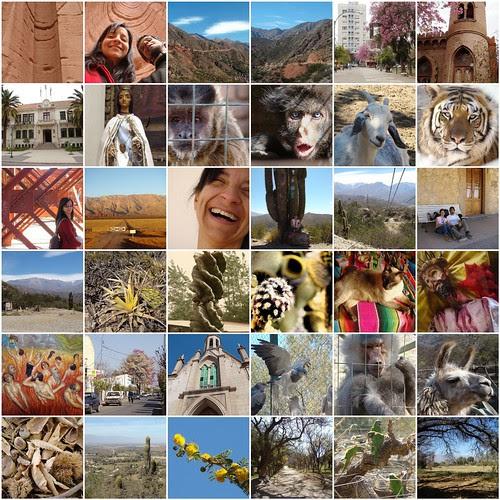 Vacaciones en Chilecito, La Rioja (vol. 2)