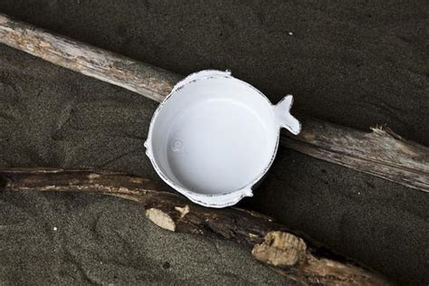 Pesce Playful 3 Piece Ceramic Bowl Set by Virginia Casa
