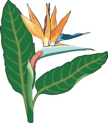 flower clip art. Flower Clip Art 15