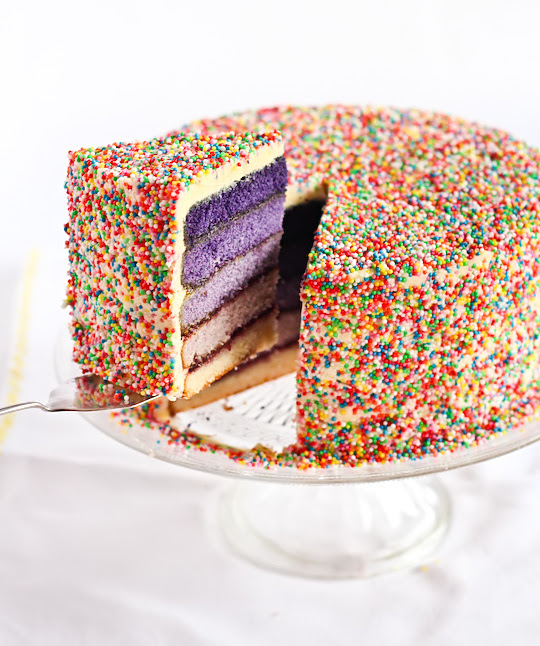 purple_ombre_sprinkle_cake-19