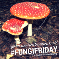 #FungiFriday on The Purple Pumpkin Blog