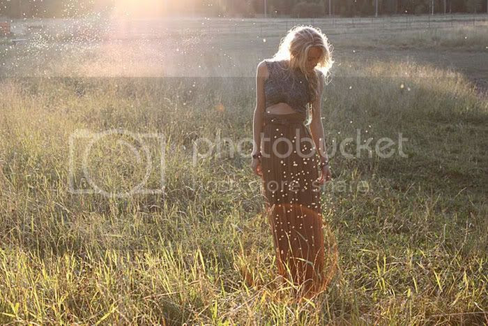 field,morning light