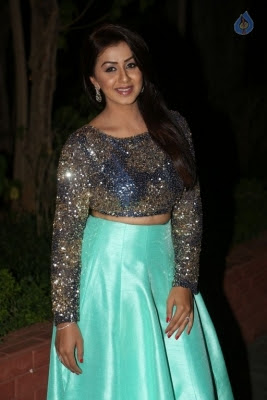 Nikki Galrani New Photos - 33 of 36