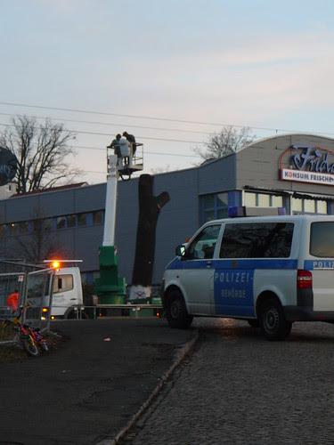 Baumfällarbeiten an der Bautzner Straße (05)