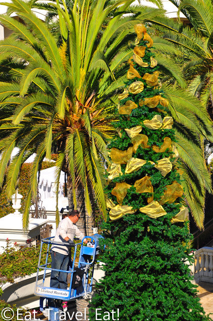 St Regis Monarch Beach- Dana Point, CA: Working on Christmas Tree 1