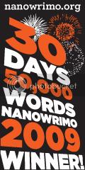 NaNoWriMo09a