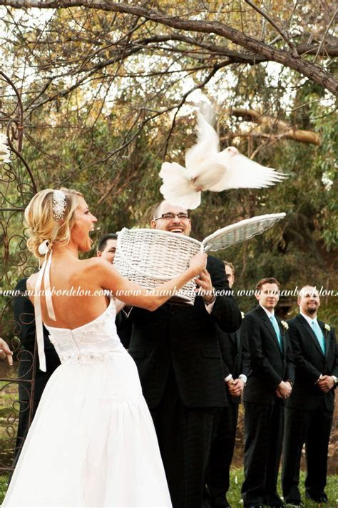 19 best images about wedding doves on Pinterest   Back to