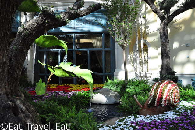 Snail and Waterfall facing VIP
