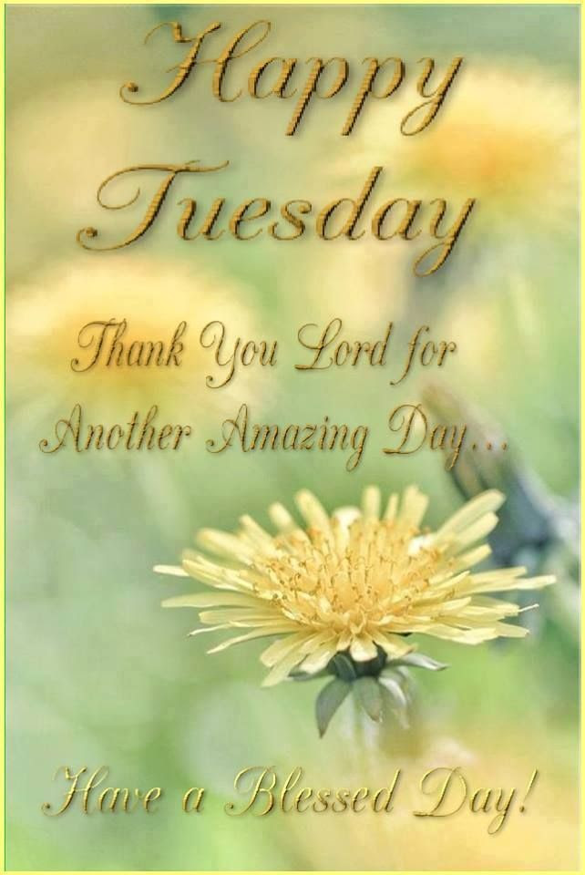 Happy Tuesday Thank You Lord Pictures Photos And Images For