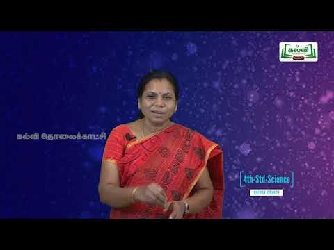 4th Science காற்றுக்கு எடை உண்டு அலகு 2 Kalvi TV