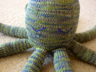 Octopus- Close Up