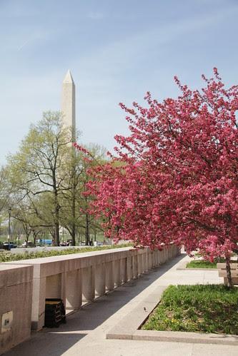 Washington DC Day 2 236