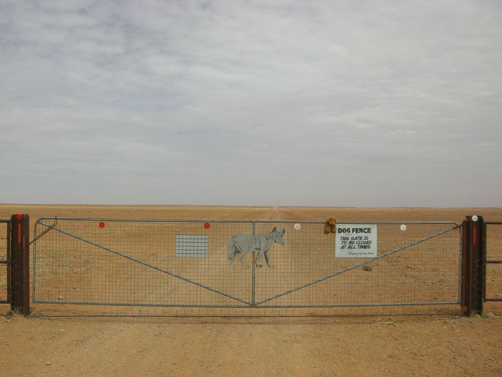 A praia de 150 quilômetros de extensão, na Austrália 09