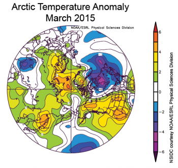 Figure 4. The plot shows Arctic air temperature anomalies at the 925 hPa level in degrees Celsius for March 2015. Yellows and reds indicate higher than average temperatures; blues and purples indicate lower than average temperatures. ||Credit: NSIDC courtesy NOAA Earth System Research Laboratory Physical Sciences Division|  High-resolution image