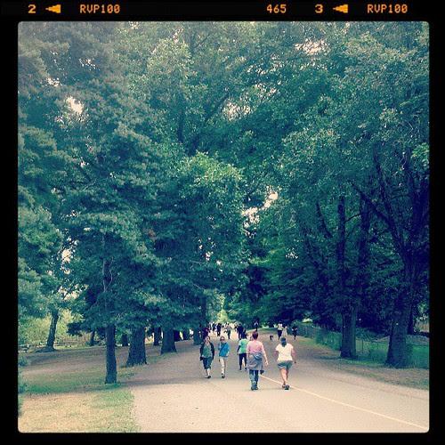 #mymorningwalk ~ seattle