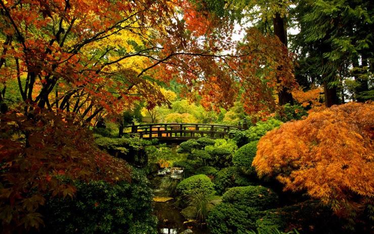 Portland Japanese Garden Photography by Craig Mitchelldyer www.craigmitchelldyer.com 503.513.0550