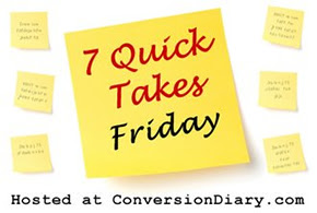 7 quick takes sm1 7 Quick Takes about interviews, crazy toddlers, and why my hand is probably going to fall off by the end of the week