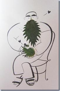 Pressed leaves illustrations