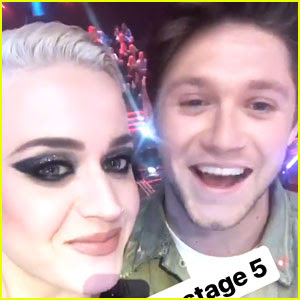 Katy Perry & Niall Horan Meet Up & Make Fun of Their Recent Interviews
