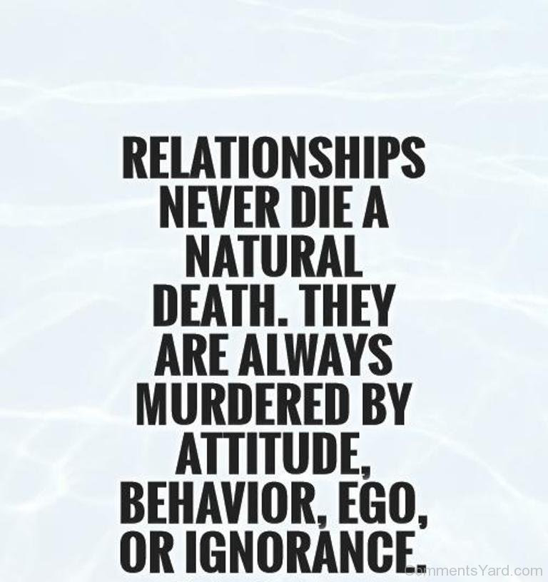 Quotes About Attitude And Ego 47 Quotes