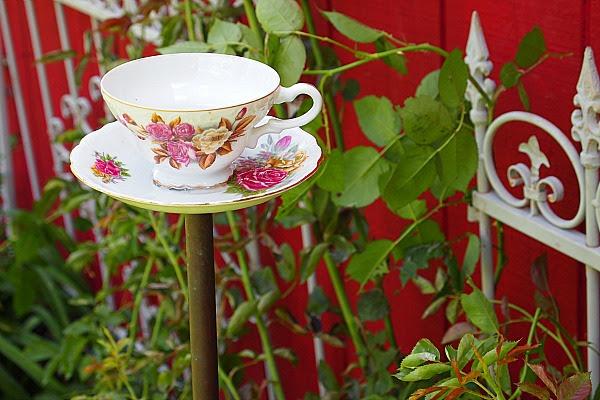 çay fincanı birdfeeder