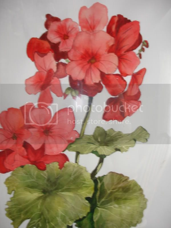 Geranium photo mypaintings005.jpg