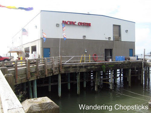3 Pacific Oyster - Bay City - Oregon 1