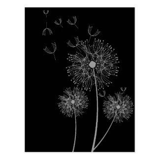 Dandelion black and white modern floral art postcard