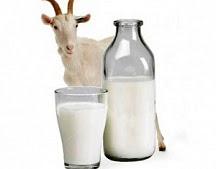 Молоко козье деревенское